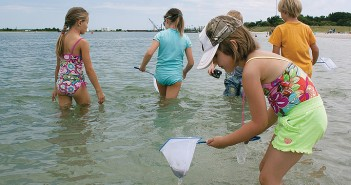 Staff photo by Emmy Errante. Children look for creatures in Banks Channel at a nature hike given by the North Carolina Coastal Reserve and Estuarine Research Reserve Tuesday, July 29.