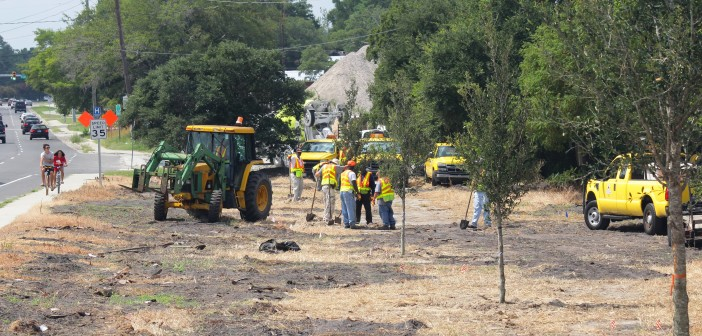 North Carolina Department of Transportation crews plant the new live oaks on the west side of the Heide Trask Drawbridge.