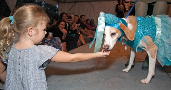 Staff photo by Emmy Errante. Corbis Stovall pets a rescue dog in princess attire during Canines & Couture Thursday, Oct. 2 at 19 Hundred.
