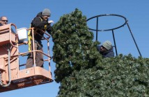 Staff photo by Allison Potter. Tim Dauphinais, left, Jonathan Babin and Kevin Sanders of Wrightsville Beach Public Works install the Christmas tree in Wrightsville Beach Park Wednesday, Nov. 19.