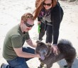 Staff photo by Emmy Errante. Scott Cash and Savannah Swanson play with their chow puppy Lozi at Wrightsville Beach Tuesday, March 24.