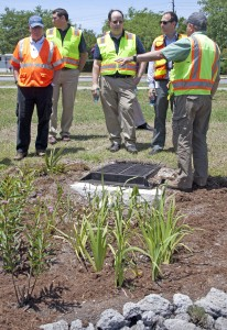 Engineers and officials learn about a rain garden on Salisbury Street in Wrightsville Beach.