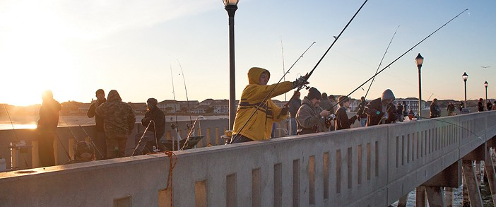 Busy final hours of annual dogfish tournament