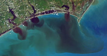 Federation tests show elevated bacteria levels at Wrightsville Beach sites; urges public to avoid the water