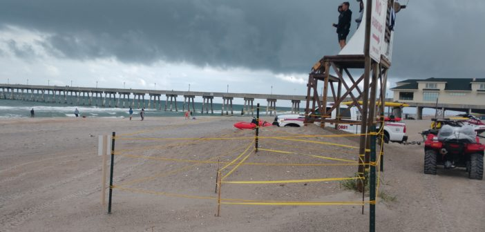 With three found so far, Wrightsville Beach turtle nests already exceed 2018 totals