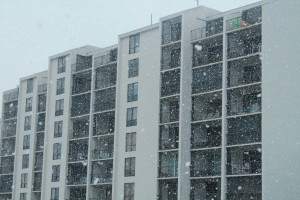 SnowDay Mar12 (5)