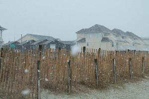 SnowDay Mar12 (6)